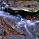Lower Oxford Falls by Jason Ruth