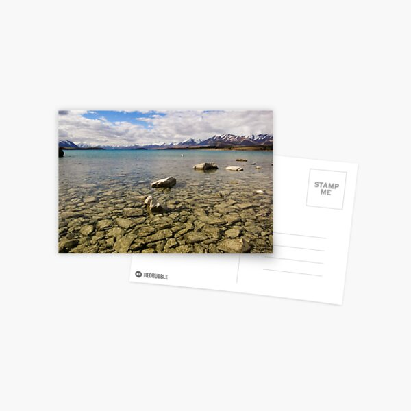 Shallow Waters Postcard