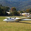 Mount Beauty Glider At Club by Joy Watson