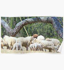 All We Like Sheep ...   Poster