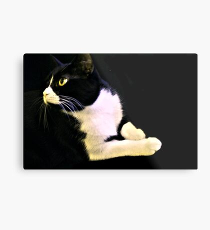 Black and White Molly Metal Print