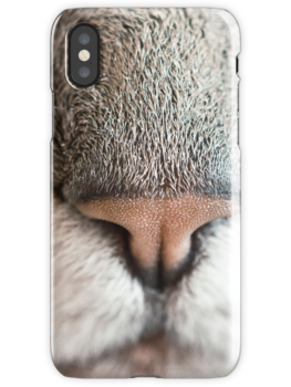Kitty  nose iPhone cases !Cat nose beautiful for lovers cats
