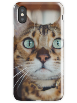 Cat face iPhone cases! beautiful product for Cats and pets  lovers