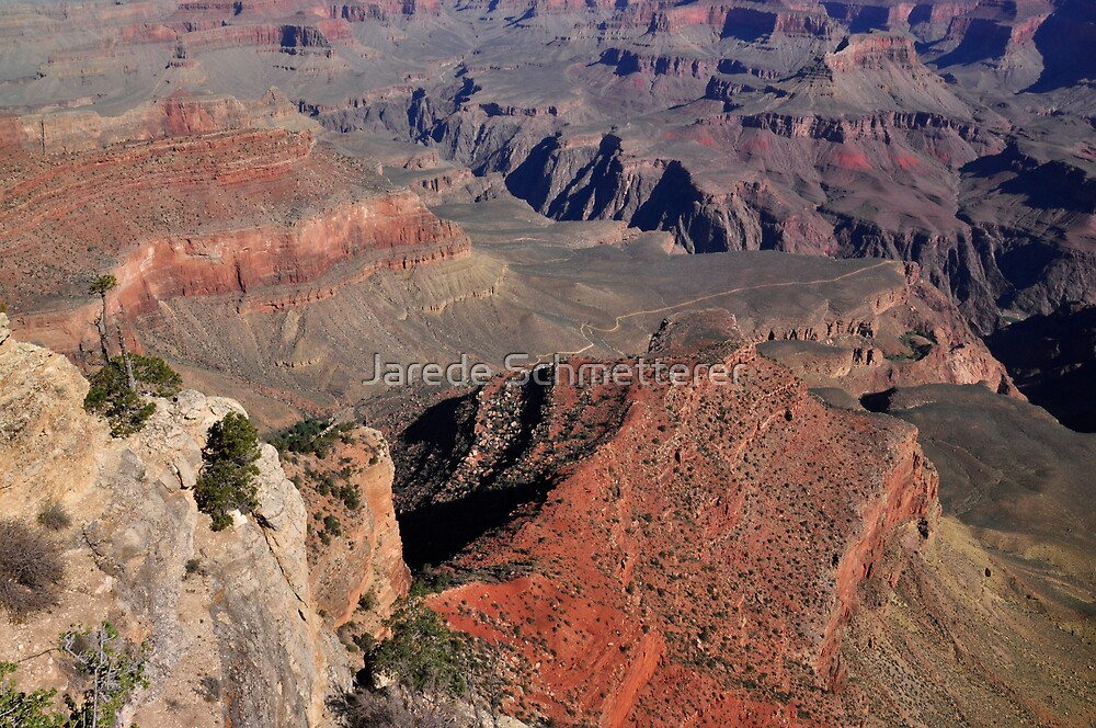Grand Canyon by Jarede Schmetterer