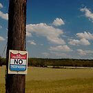 No Trespassing by thartranft
