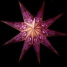 star light (purple) by Perggals© - Stacey Turner