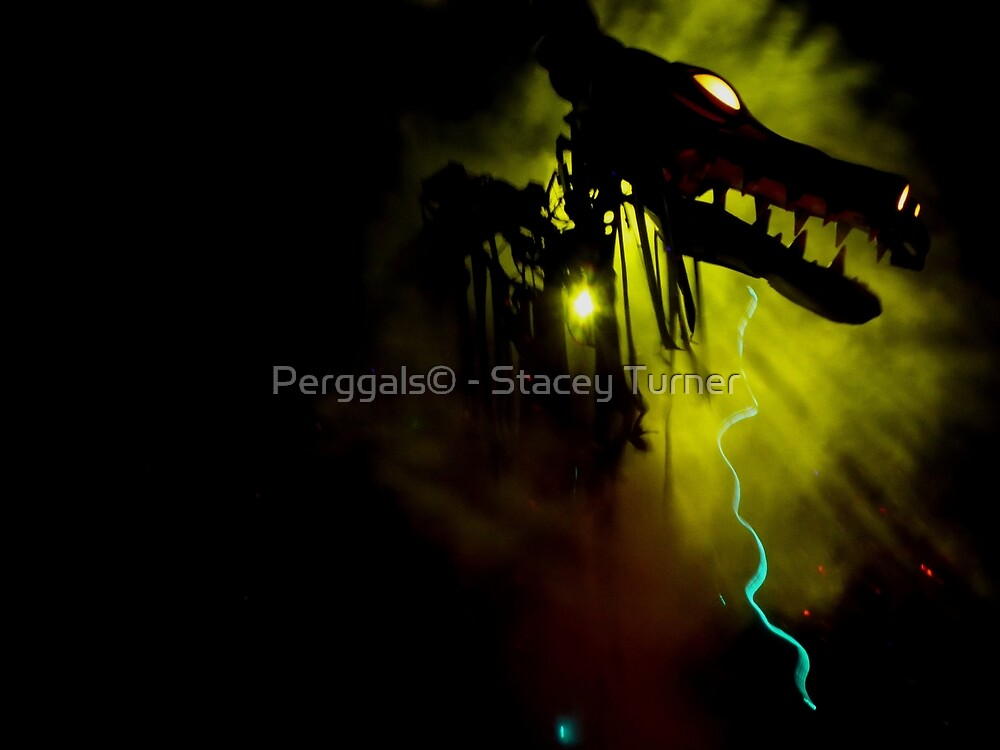 dragon - lights by Perggals© - Stacey Turner