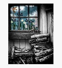 The Woodpile Photographic Print