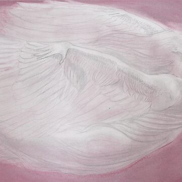 Pink Angel by arstone