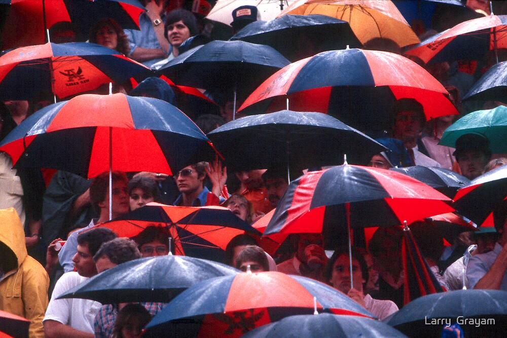 Umbrellas by Larry  Grayam