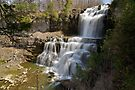 An Overview - Chittenango Falls by Stephen Beattie