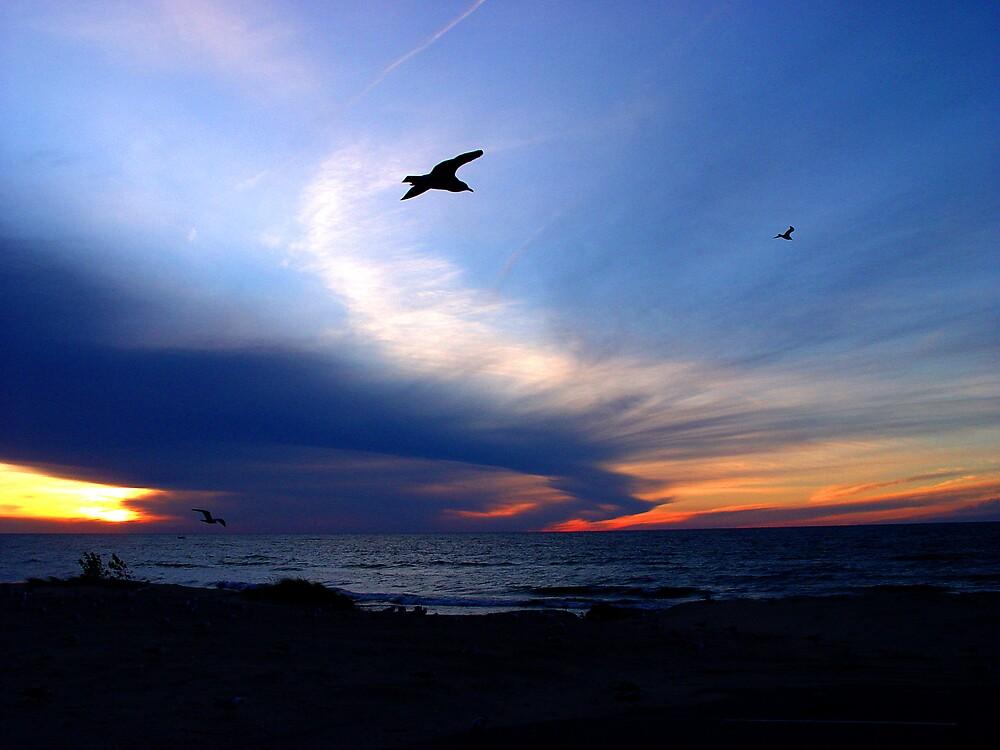 Blue Sky Sunset by Dennis Burlingham