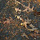 Casualties of Autumn by peterhau