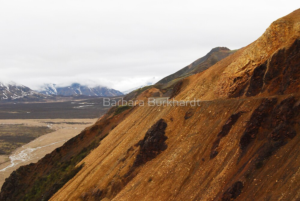The Road Ahead - Denali National Park by Barbara Burkhardt