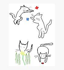 Lámina fotográfica Gatos juguetones de primavera