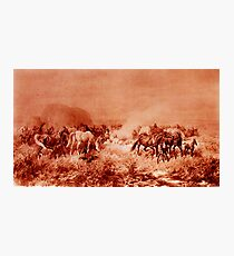 HORSES GRAZING ,Antique Red Brown  Photographic Print