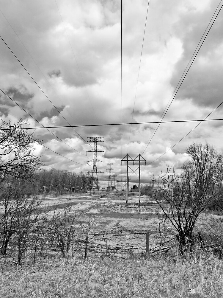 Power in Nature by JThill