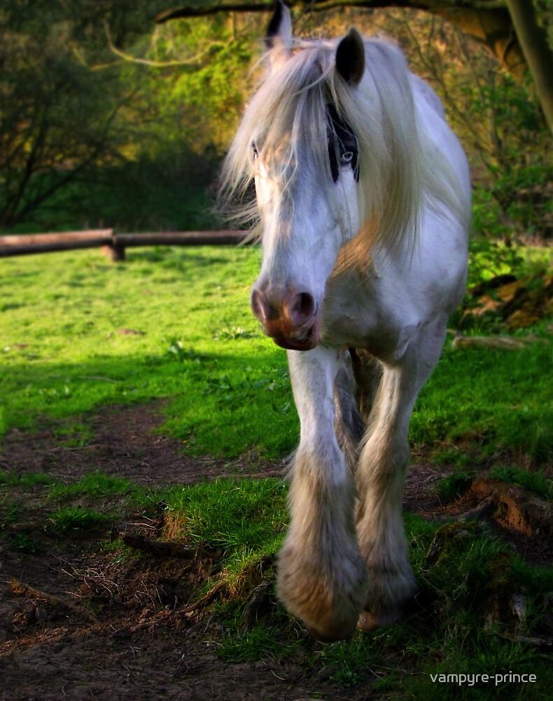 Blue eyed Stallion by vampyre-prince
