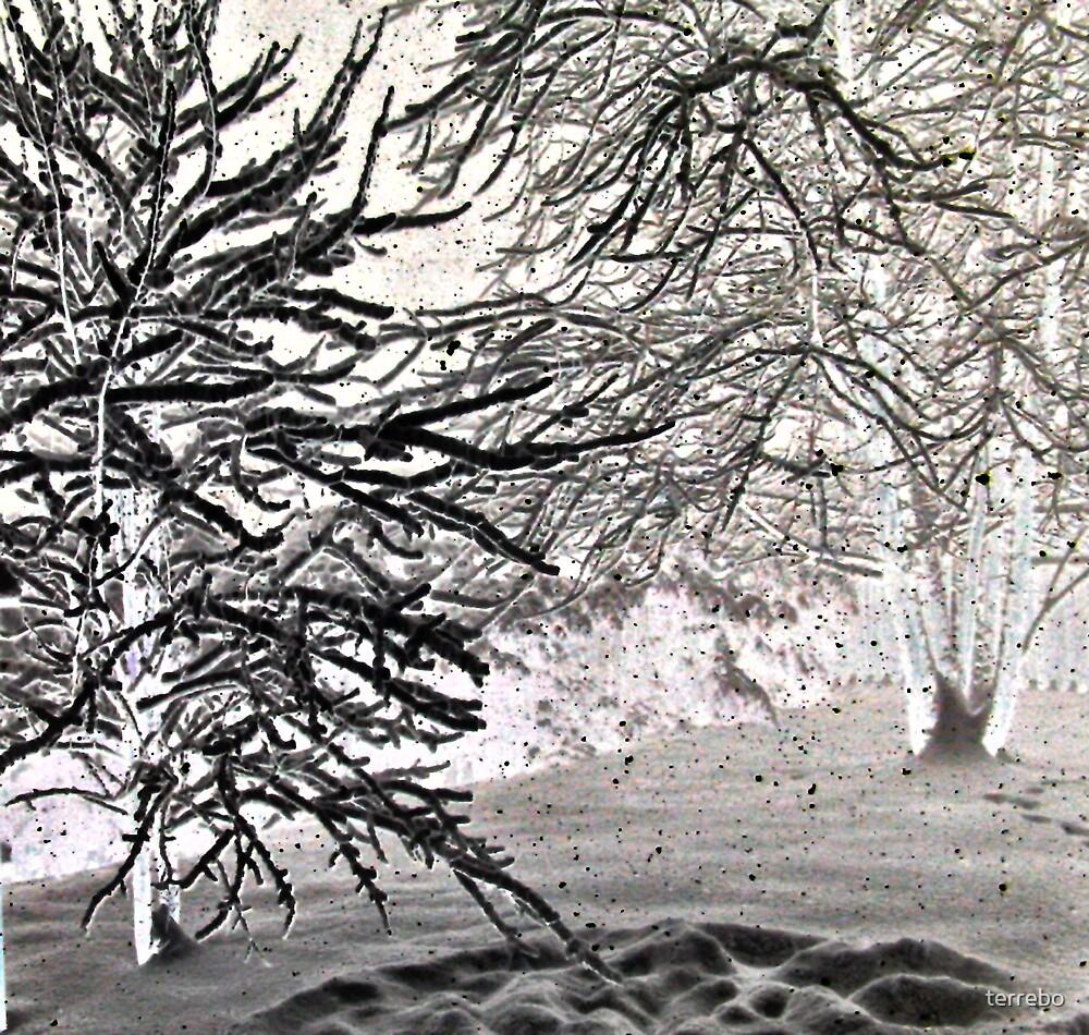 Black Snow Fall by terrebo
