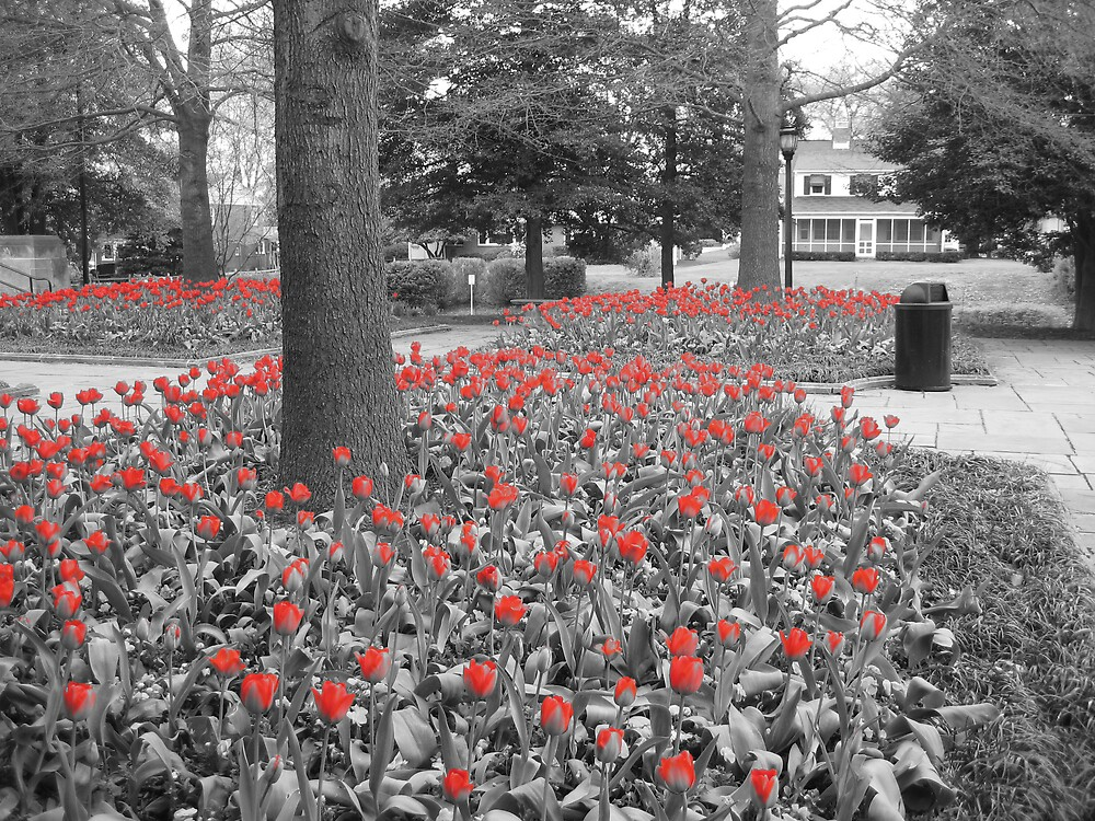 March of the Tulips by trippledub
