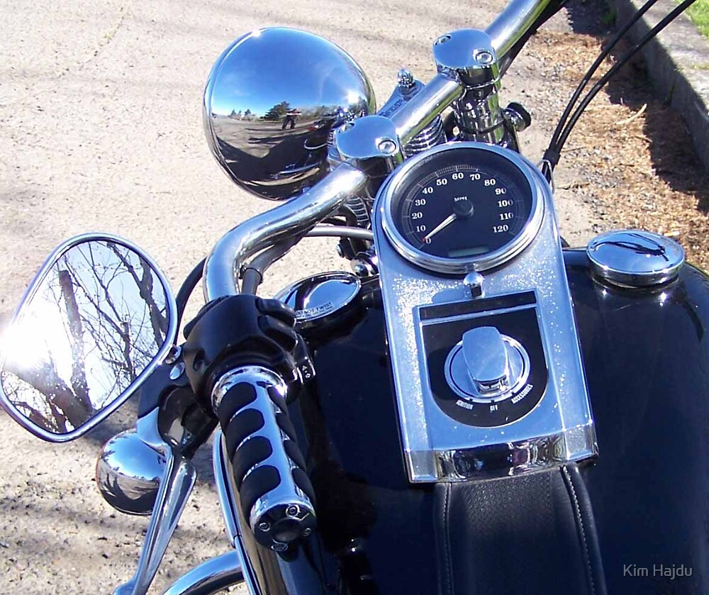 Its About The Ride by Kim Hajdu