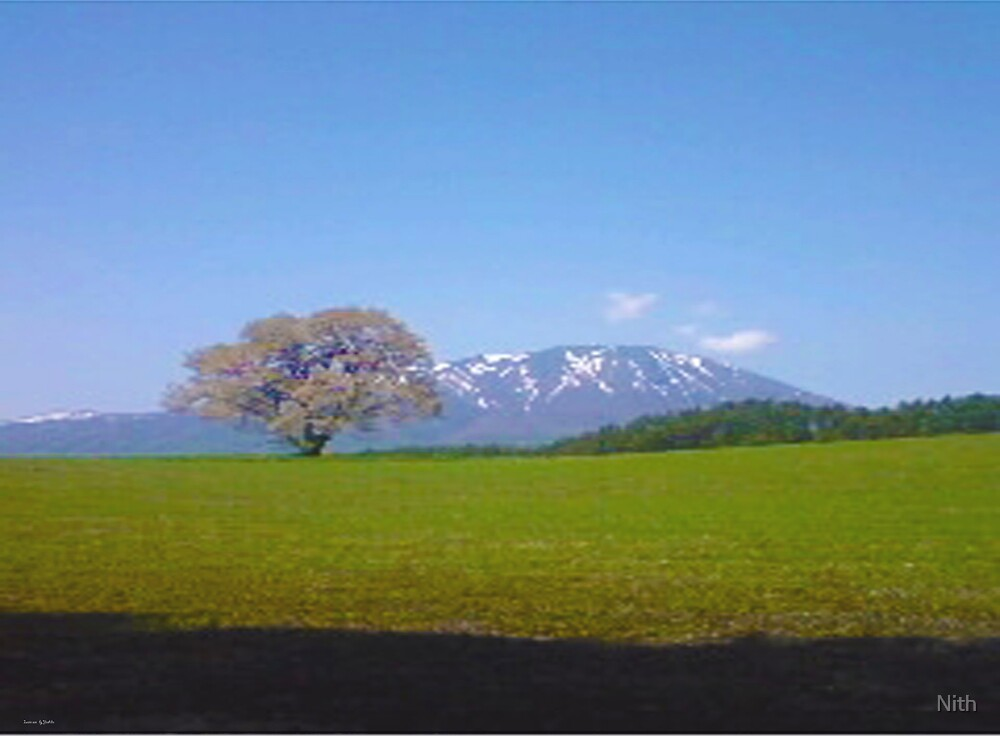 Iwate MT by Nith