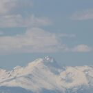 View of Longs Peak close to my home 01 by janetmarston