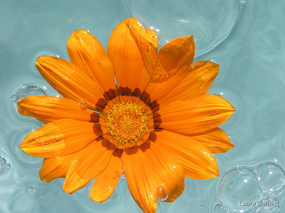 Orange Gerbia by Laura Garnett