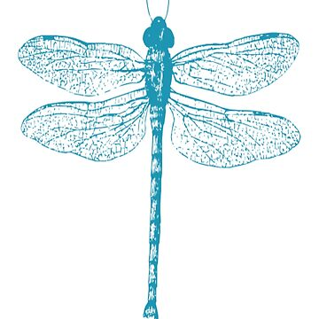 Blue Dragonfly Asian Insect  by TheKitch