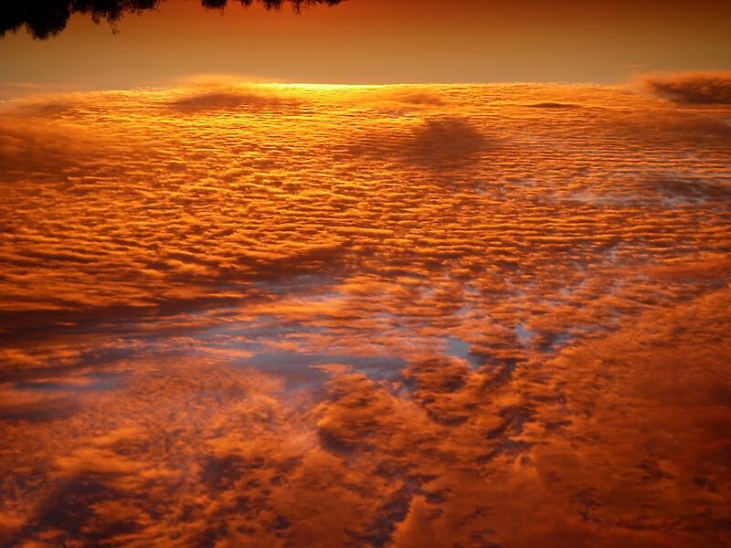 cloudland by janemartin