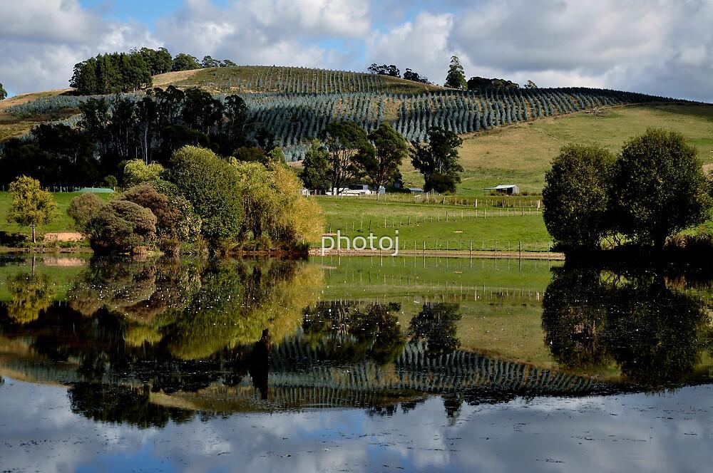 photoj Tas, 'Countryside' by photoj