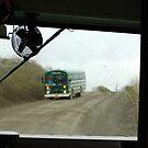Traffic -  Green Buses of Denali National Park by Barbara Burkhardt