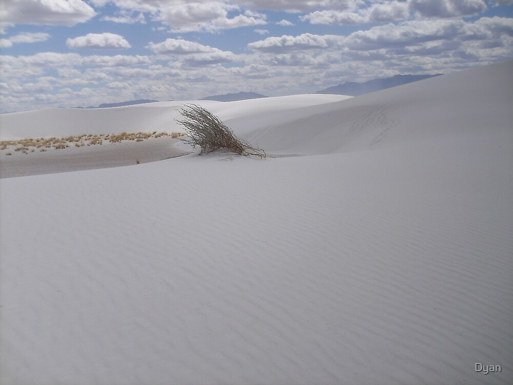 WHITE SANDS by Dyan