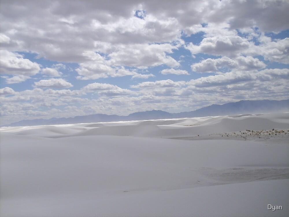 THE DESERT by Dyan