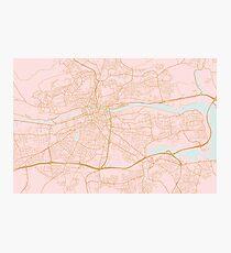 Pink Cork map, Ireland Photographic Print