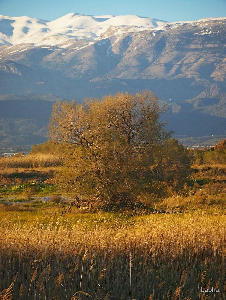 Ida mountain by babha