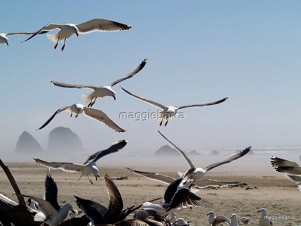 Flock of Seagulls by maggiebarra