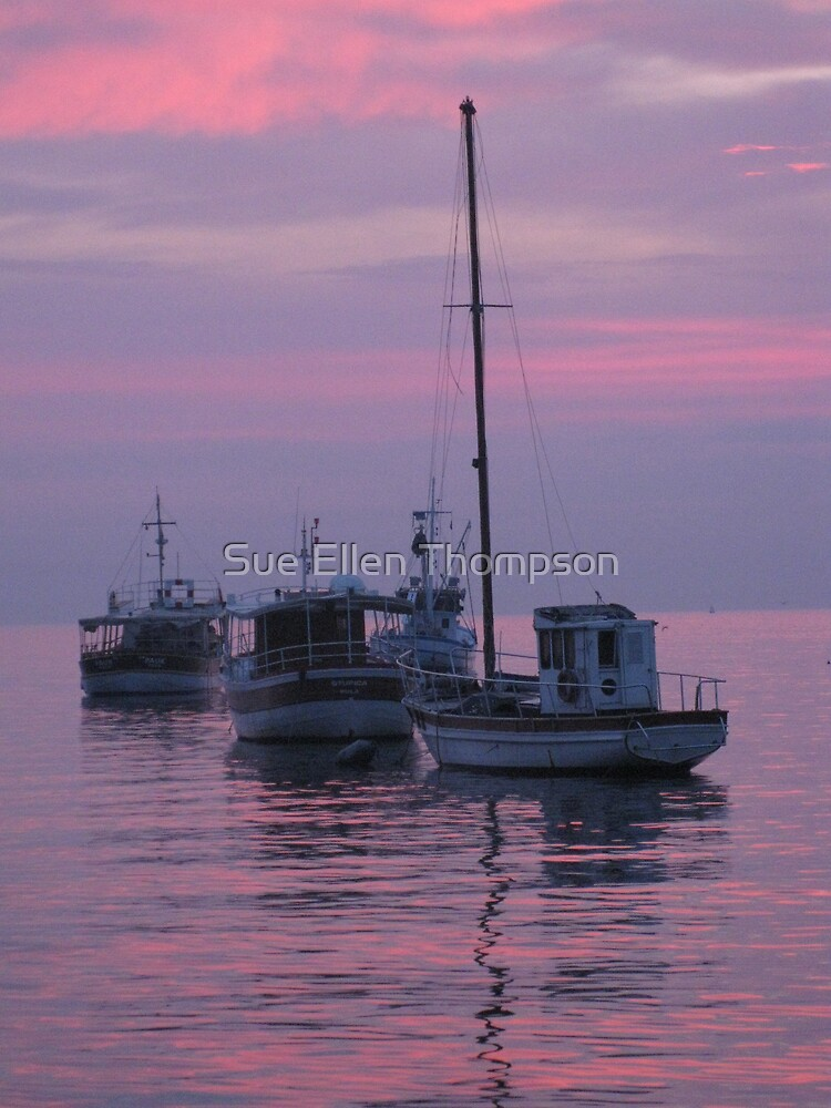 Harbor View by Sue Thompson