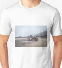 Rocks on misty beach Unisex T-Shirt