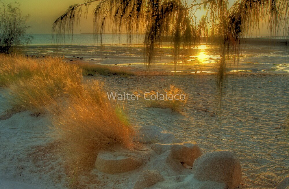 Beach Scene 2 by Walter Colaiaco