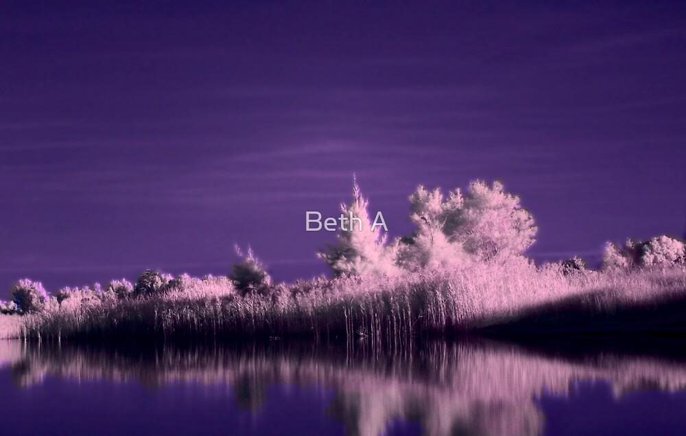 Bonbeach Wetlands by Beth A