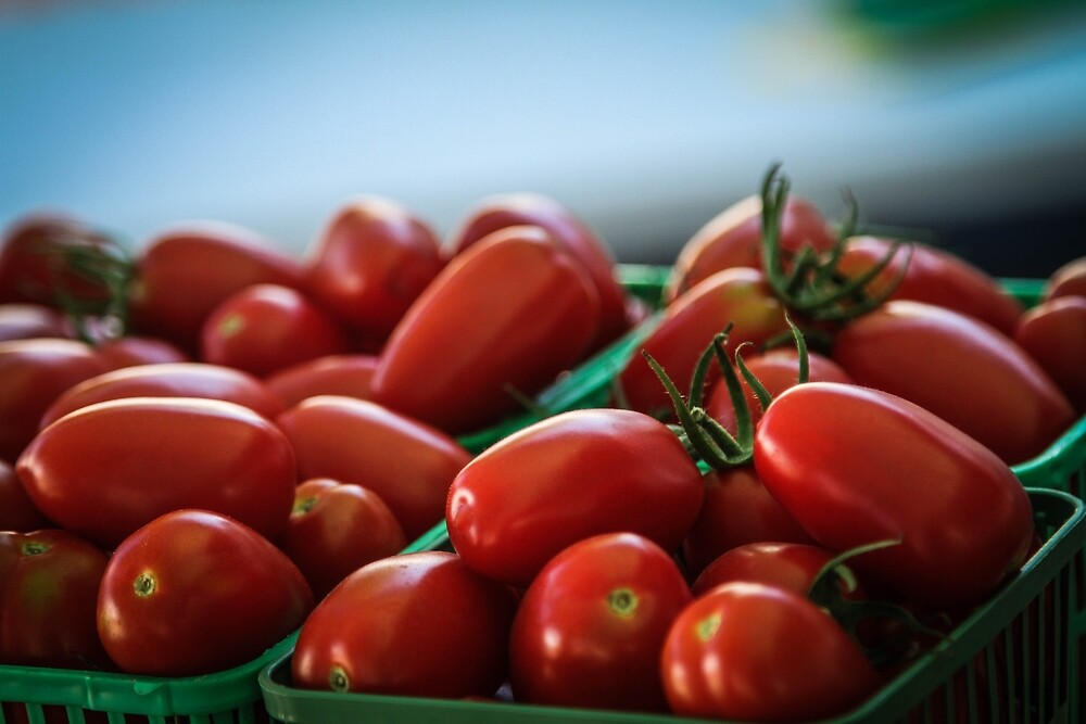 Roma Tomatoes in Basket by jongagnon