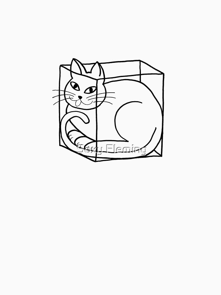 boxcat by SoxyFleming