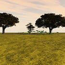 Tranquil Meadow by dmark3