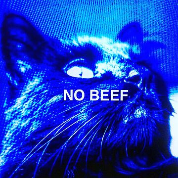 Bubble the Cat No Beef Edit by JAMESWOODFORD