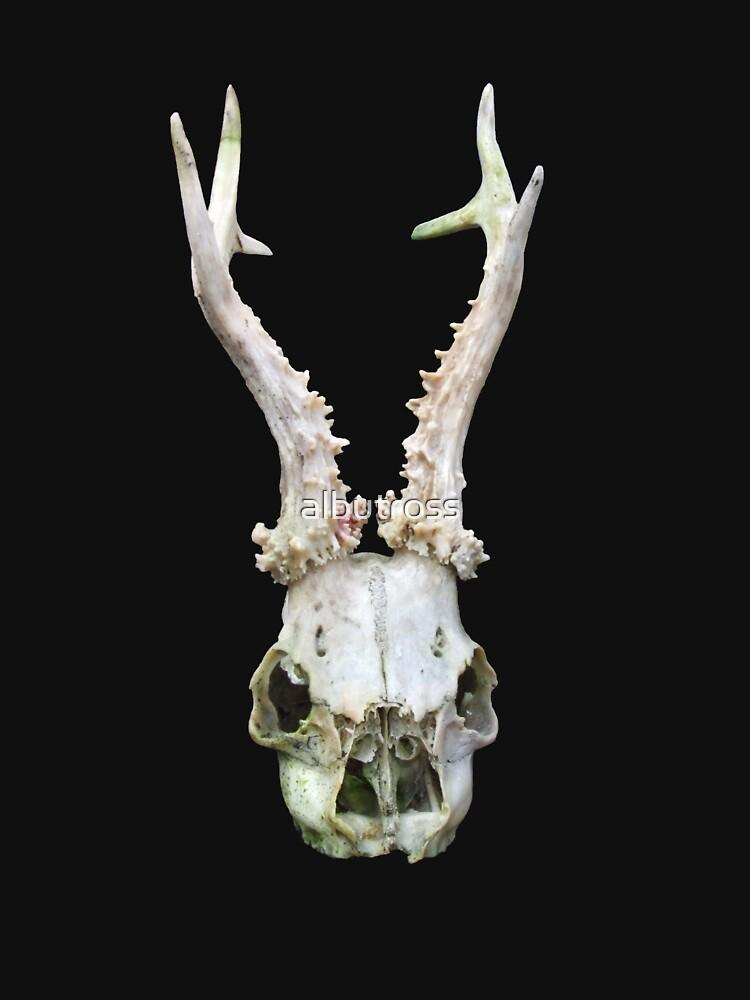 Skull by albutross