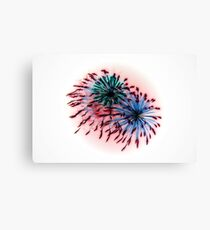 HighKey Firework Canvas Print