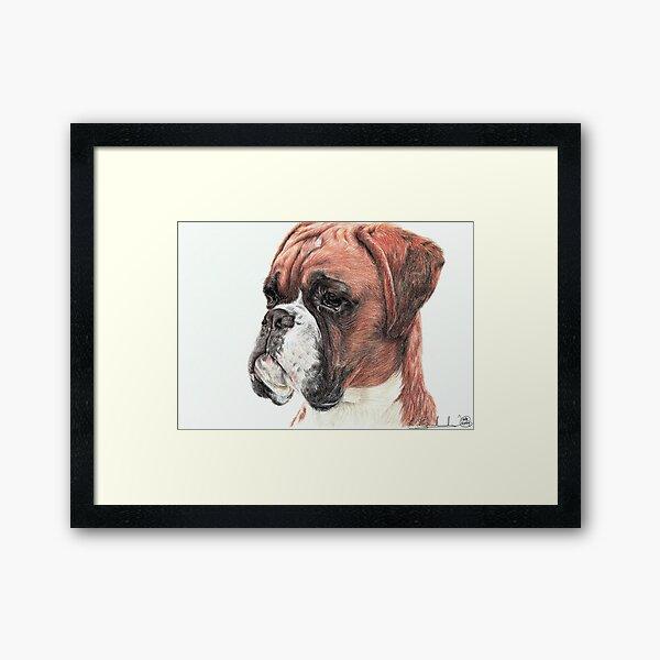 Boxer Framed Art Print