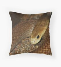 Coastal Taipan Throw Pillow