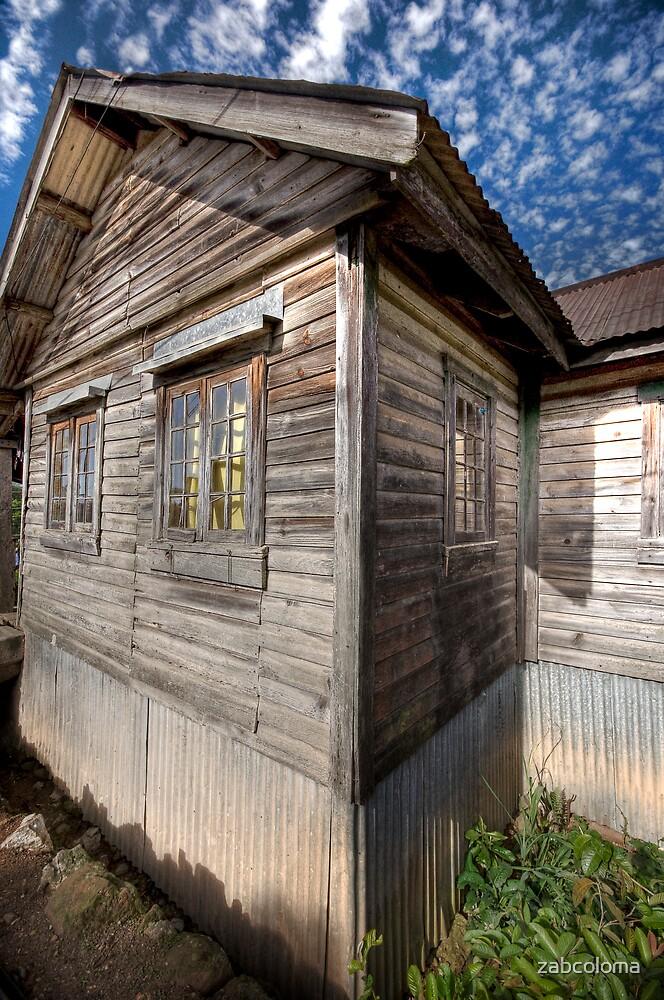 Wooden House by zabcoloma